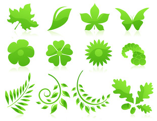 Green leaf icon collection