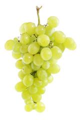 White grape cluste