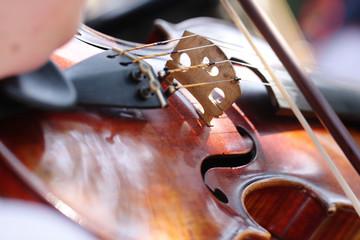 Fototapeta gra na skrzypcach