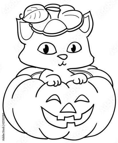 Gatto Dentro Una Zucca Di Halloween Da Colorare Stock Photo And