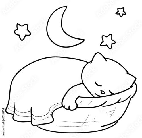 Immagine Gatto Che Dorme Da Colorare