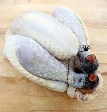 poulet noir de challans