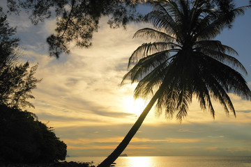 Coast of peninsula Santubong. Sunset. Borneo.