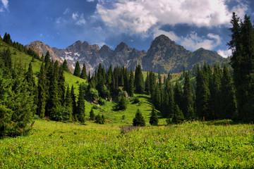 Mountain landscape Trans-Ili Alatau