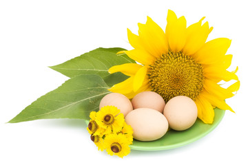 Easter eggs and yellow flowers