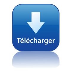 Bouton Web TELECHARGER (internet téléchargement gratuit p2p)