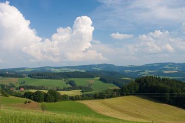 Schwarzwald © Matthias Buehner