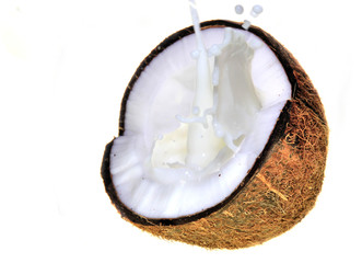Wall Mural - Coconut with milk splash