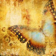 Foto auf AluDibond Schmetterlinge im Grunge beautiful golden abstraction with butterfly
