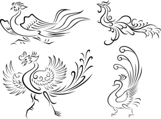 abstract phoenix illustration