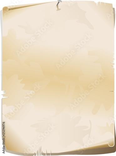 Pergamena Matrimonio Simbolico : Quot carta pergamena old paper parchment vector imágenes de