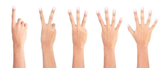 12345 hands