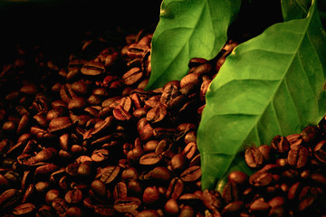 coffee beans and green leaf