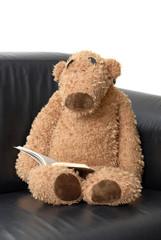 ours en peluche lisant un livre