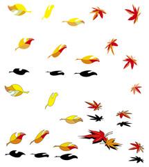 枯葉 紅葉