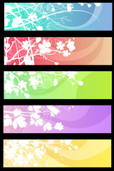 Five different beautiful colorful banners