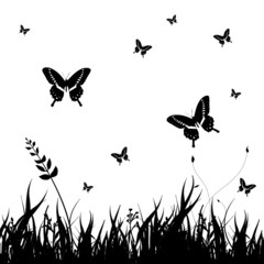 grass silhouettes background with Butterflies