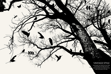 Ingelijste posters Vogels op boom tree and bird