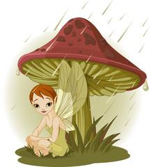 Photo sur Plexiglas Monde magique Fairy under Mushroom