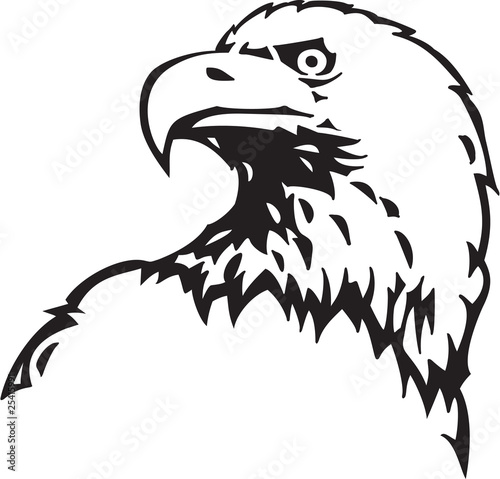 Eagle clipart black and white