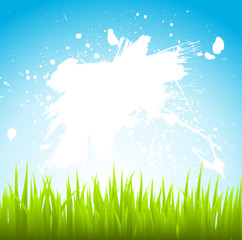 vector grass and sky