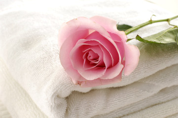Roses over towel