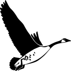 Canadian Goose Vinyl Ready Vector Illustration
