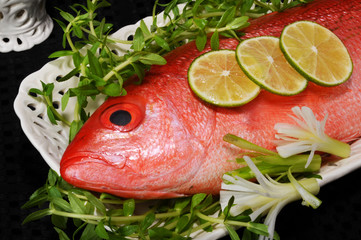 Closeup of Red Snapper Fish.