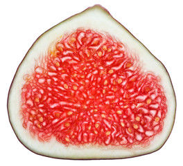 Cross-section of fig tree fruit isolated on white