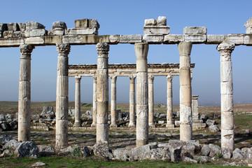Marble columns