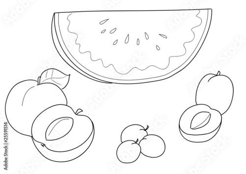 Frutta Da Colorare Anguria Pesca Albiccocca Susina Immagini E