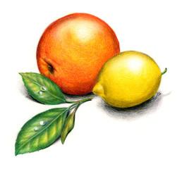 Agrumi: un arancio e un limone su fondo bianco