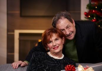 Portrait of senior couple at christmas