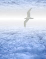 Wall Mural - Bird in serene cloudscape