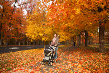 Wall Mural - Mother walking with baby in stroller in orange autumn park