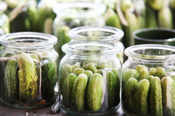 Fresh cucumbers ready to be pickled