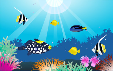 Aluminium Prints Submarine sealife background