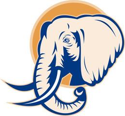 african bull elephant head side