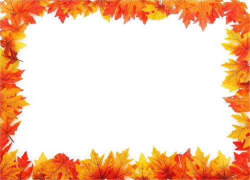 Full Boarder Of Leaves