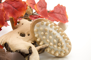 Massage Bürste und Blätter