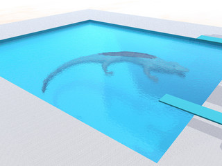 Alligator in the Swimming Pool