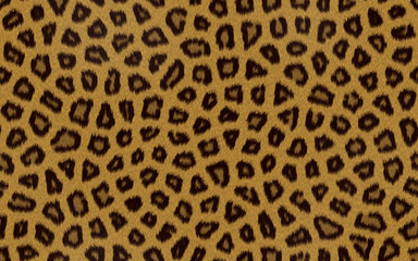 Seamless background cheetah skin