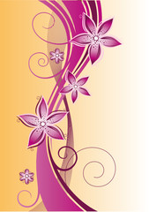 Blumen, Blüten, background, floral, filigran, rosa, pink