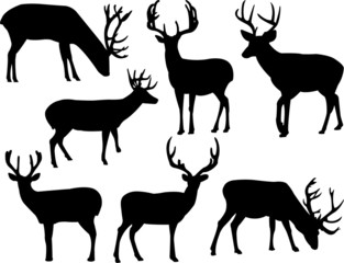 deers silhouette collection vector