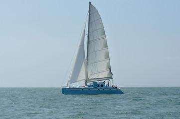 catamaran bleu 1
