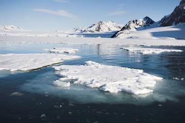 Arctic landscape (Spitsbergen)