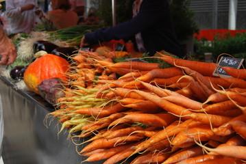carottes du marché 2