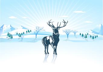 Hirsch im Winter