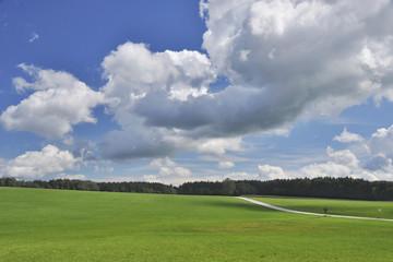 Wolke und Wiese