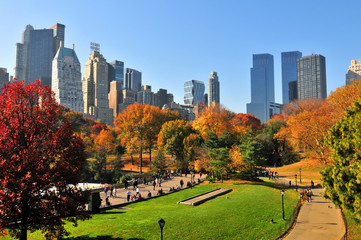 Autumn in the Central Park & NYC.